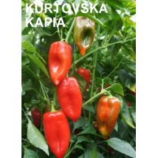 "ARDEI KAPIA ""KURTOVSKA KAPIA"""
