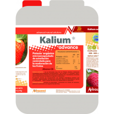 kalium advance