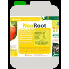 Neoroot
