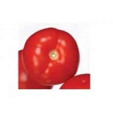 Tomate determinate AMAPOLA F1 -