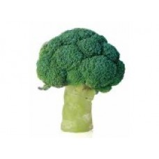 "Broccoli ""PARTHENON F1"""